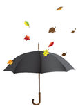 черный зонтик Стоковое Изображение RF