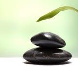 черный камень листьев стоковые фотографии rf