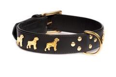 Черный кожаный воротник для собаки Стоковые Изображения RF