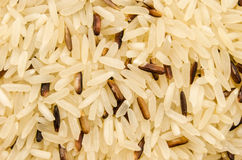 черный коричневый рис стоковые фотографии rf