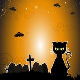 Черный кот в дне хеллоуина Стоковые Изображения RF