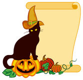 Черный кот в шляпе ведьмы и тыкве хеллоуина Стоковая Фотография