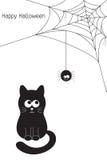 Черный кот и паук Стоковые Фотографии RF