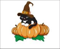 Черный кот на тыкве Стоковые Фотографии RF