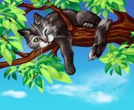 Черный кот на дереве Стоковое Фото