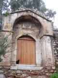 Черный кот против старой деревянной двери Стоковое фото RF