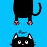 черный кот смотря вверх Смешной силуэт головы стороны Текст Meow Вися тучная печать лапки тела, кабель Милый персонаж из мультфил бесплатная иллюстрация