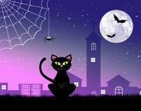Черный кот хеллоуина Стоковая Фотография RF
