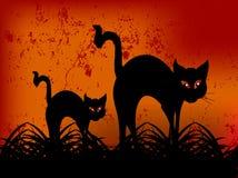 черный кот halloween счастливый иллюстрация вектора