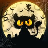 черный кот halloween Стоковые Изображения