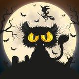 черный кот halloween Стоковые Фото