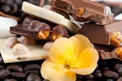 черный кофе шоколада соединяет белизну Стоковые Фотографии RF
