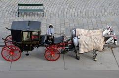 Черный красный туристский экипаж лошади - Вена, Австрия стоковое изображение