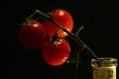 черный красный цвет Стоковые Фото