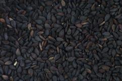 Черный макрос предпосылки тимона Стоковое фото RF