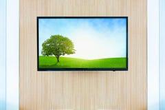 Черный модель-макет экрана телевизора ТВ СИД Злаковик ландшафта на mo стоковые изображения rf