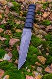 Черный нож на зеленом мхе осень яблока миражирует листья состава сухие sacking ваза Стоковые Изображения