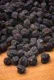 Черный нут Murgia (Италия) стоковое изображение