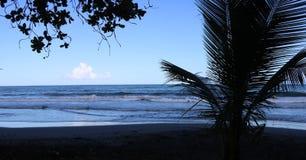 Черный пляж в Гваделупе стоковые изображения rf