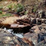 Черный пруд Стоковые Изображения RF