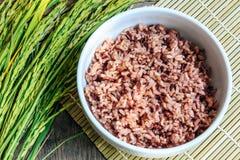Черный рис в шаре и неочищенных рисах Стоковые Фотографии RF