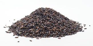 Черный рис жасмина (ягода риса) Стоковое Изображение