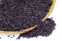 Черный рис жасмина (ягода риса) Стоковое Фото