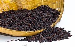 Черный рис жасмина (ягода риса) Стоковое Изображение RF