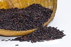 Черный рис жасмина (ягода риса) Стоковое фото RF