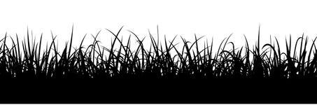 Черный силуэт травы, безшовная иллюстрация Граница луга Стоковое фото RF