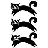 Черный симпатичный кот для печати футболки Стоковое Изображение