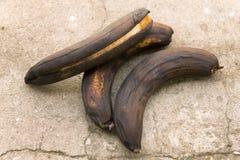 Черный тухлый банан 3 Стоковая Фотография