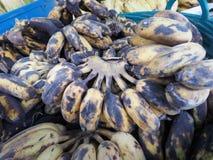 Черный тухлый культивируемый банан в пластичной корзине Стоковое Изображение