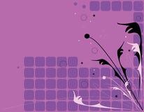 черный флористический розовый пурпур Стоковые Изображения RF