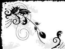 черный цветок Стоковые Изображения RF