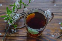 Черный чай в ветви чашки и вишни лежа на деревянной поверхности Конец-вверх Селективный фокус Стоковое Изображение RF