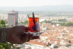 Черный чай от Чёрного моря Стоковые Изображения RF