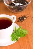 черный чай чашки Стоковые Фотографии RF