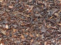 Черный чай Rize Стоковая Фотография RF