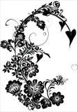 черный tendril цветка Стоковые Изображения