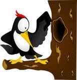 Черный woodpecker с желтым клювом на дереве Стоковые Изображения