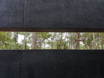 черным взгляд индюка зоны фото природы принятый морем Стоковые Фото
