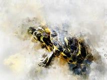 Черным покрашенная yelow черепаха акварели стоковые изображения rf