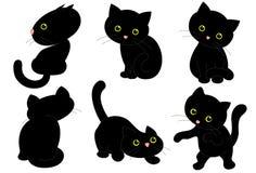 6 черных котов Стоковые Изображения RF