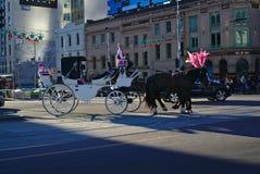 2 черных лошади с розовыми покрашенными орнаментами вытягивая белый экипажа стоковое фото