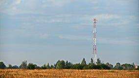 Чернь башни Стоковые Фотографии RF