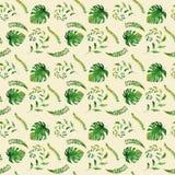 Чертежи акварели тропиков Картина иллюстрация вектора