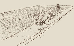 Чертеж вектора. Примитивное земледелие. Крестьяне tr иллюстрация штока