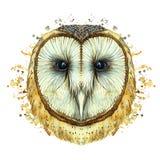 Чертеж животного сыча птицы хищника, общий сыч акварели, портрет сыча, белый сыч, пер, белая предпосылка для оформления Стоковое Изображение RF