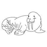 Чертеж моржа Линия морж искусства также вектор иллюстрации притяжки corel Стоковые Изображения RF